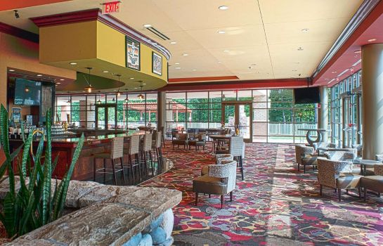 Hotel bar Embassy Suites by Hilton Charlotte-Concord-Golf Resort - Spa