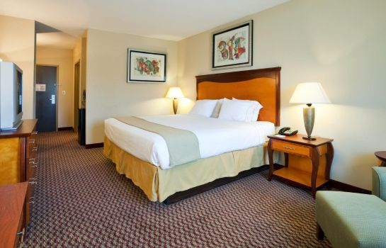 Zimmer Holiday Inn Express & Suites BIRMINGHAM - INVERNESS 280