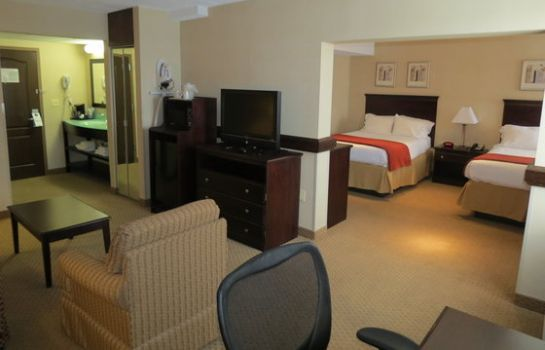 Suite Holiday Inn Express ROCHESTER - GREECE