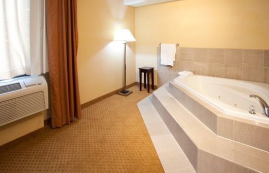 Zimmer Holiday Inn Express ROCHESTER - GREECE