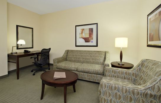 Suite Hilton Garden Inn Beaumont