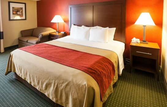 Zimmer Comfort Inn and Suites Statesville