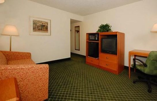 Suite Econo Lodge Inn & Suites Johnson City