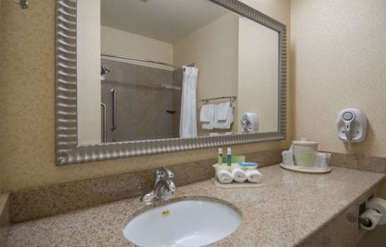 Info Holiday Inn Express & Suites BAKERSFIELD CENTRAL