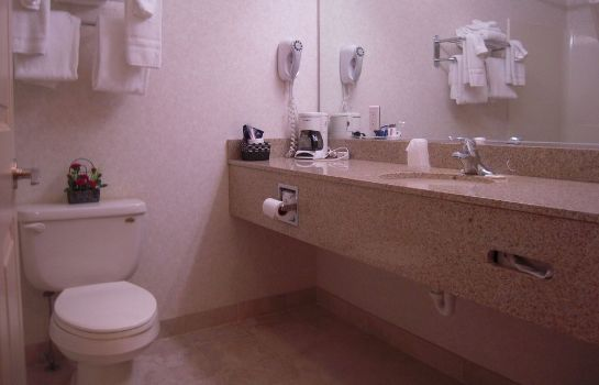 Bathroom Albany Airport Cocca's Inn & Suites Wolf Rd