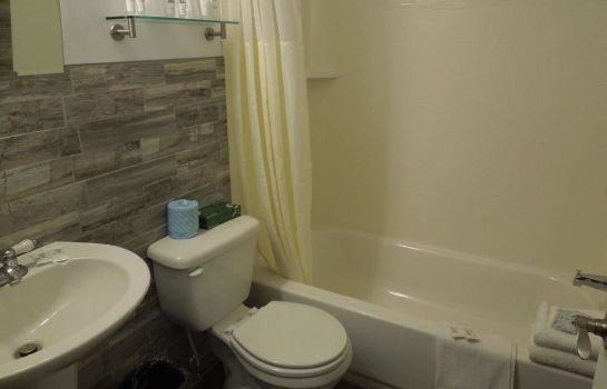 Bagno in camera Albany Airport Cocca's Inn & Suites Wolf Rd