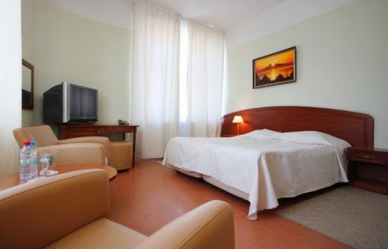 Double room (standard) Comfitel Demidov Bridge