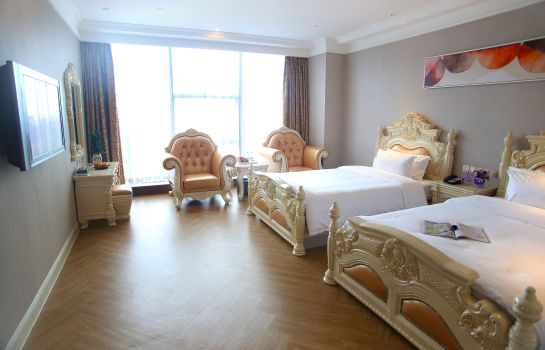 Double room (standard) GuanSheng KingStyle Hotel