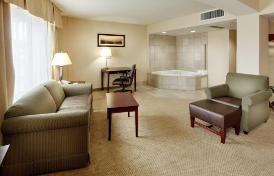 Suite Holiday Inn Express ALBANY - DOWNTOWN
