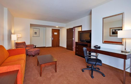 Suite Holiday Inn BIRMINGHAM - HOMEWOOD