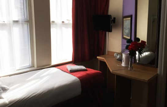 Single room (standard) Euro Hotel Wembley