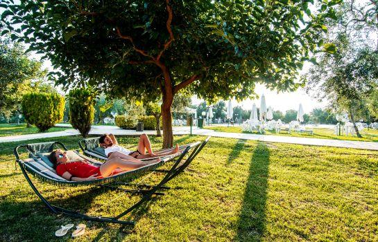 Camping agriturismo il giardino degli ulivi in lazise italien acsi