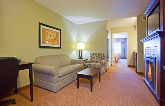 Suite Holiday Inn & Suites GREEN BAY STADIUM
