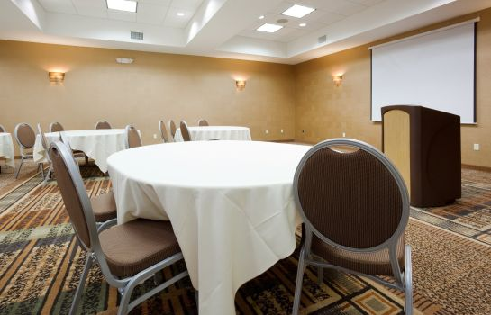 Conference room Holiday Inn & Suites GREEN BAY STADIUM