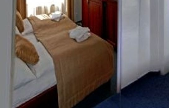 Double room (standard) U Stare Pani At The Old Lady