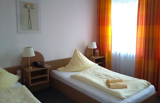 Single room (standard) Zum Alten Wirt Landhotel
