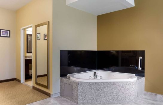 Suite Comfort Inn and Suites Amarillo