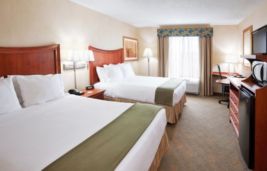 Suite Holiday Inn Express & Suites AUBURN HILLS