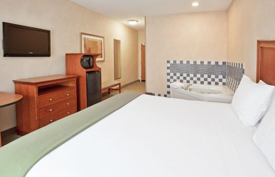 Room Holiday Inn Express & Suites AUBURN HILLS