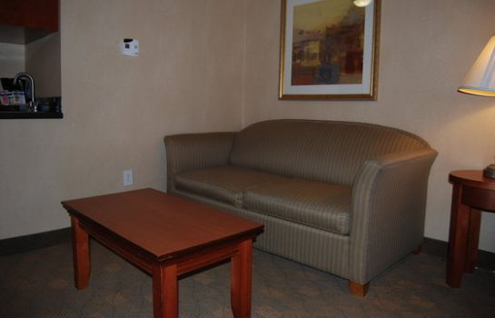 Zimmer Holiday Inn Express & Suites AUBURN HILLS