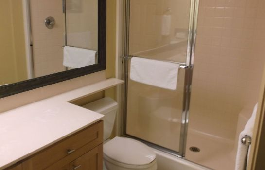 Bagno in camera Daytona Beach Regency by Diamond Resorts