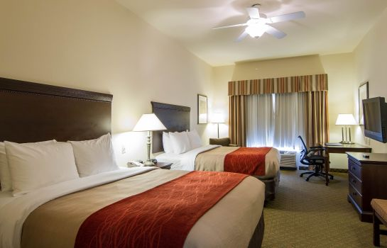Room Comfort Inn & Suites Airport