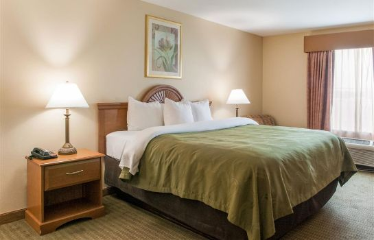 Chambre Quality Inn and Suites