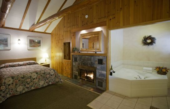 Suite ABVIS Lake George