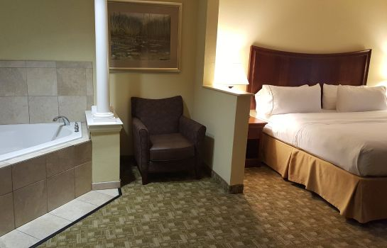 Suite Holiday Inn Express JACKSONVILLE EAST