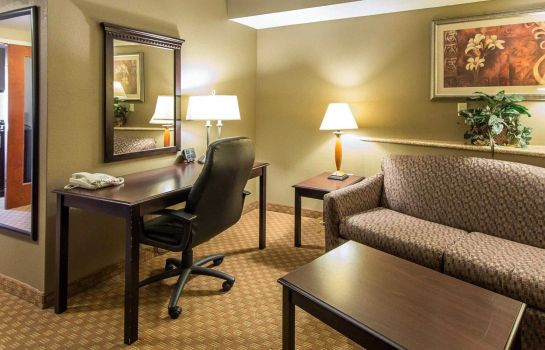 Suite Comfort Suites North
