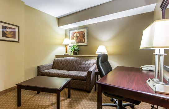 Zimmer Comfort Suites North