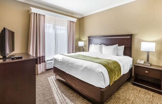 Suite Comfort Suites Houston IAH Airport - Beltway 8