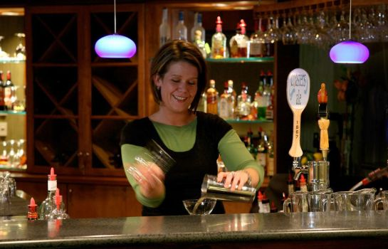 Hotel-Bar DoubleTree by Hilton Holland