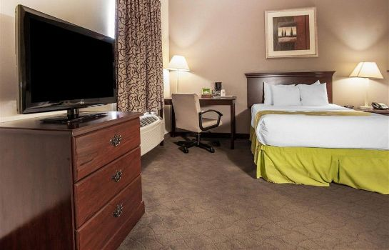 Suite Econo Lodge  Inn and Suites Fairgrounds