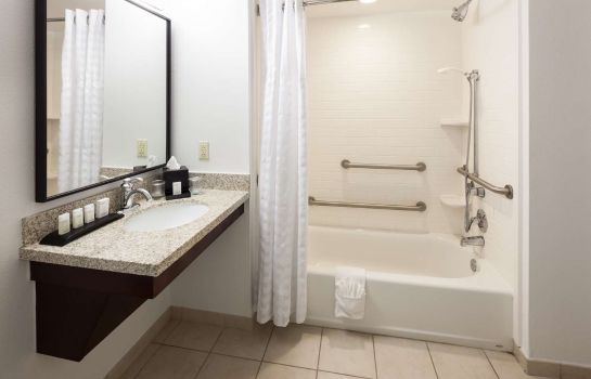 Chambre Embassy Suites by Hilton Tampa Brandon