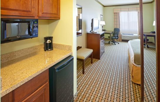 Suite Holiday Inn Express & Suites FORT WORTH I-35 WESTERN CENTER