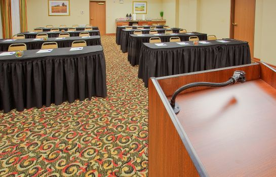 Congresruimte Holiday Inn Express & Suites FORT WORTH - FOSSIL CREEK
