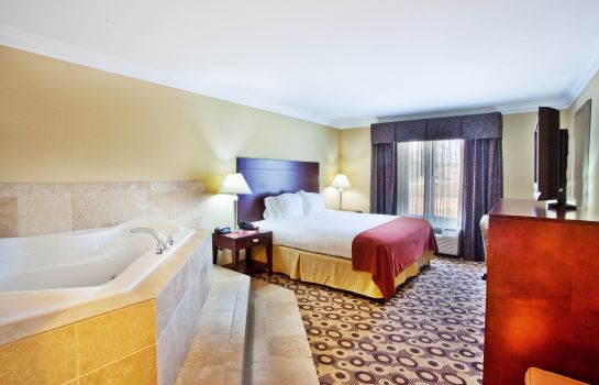 Suite Holiday Inn Express & Suites MACON-WEST