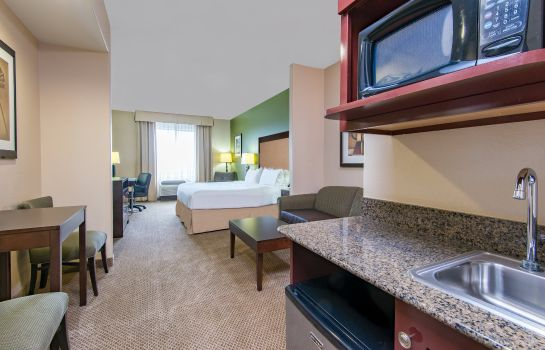 Suite Holiday Inn Express & Suites PHOENIX - GLENDALE SPORTS DIST