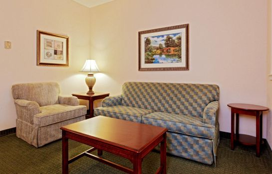 Suite Holiday Inn Express & Suites SAN ANTONIO SOUTH