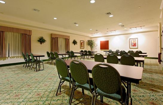 Tagungsraum Holiday Inn Express & Suites SAN ANTONIO SOUTH