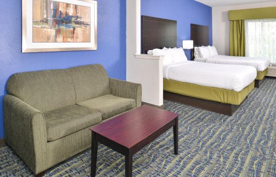 Zimmer Holiday Inn Express & Suites SAN ANTONIO SOUTH