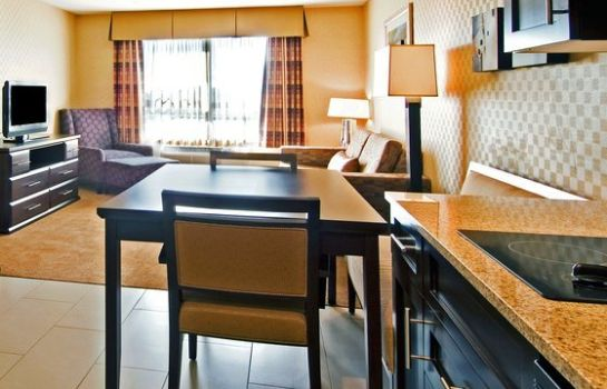 Suite Holiday Inn Express & Suites RIVERPORT RICHMOND
