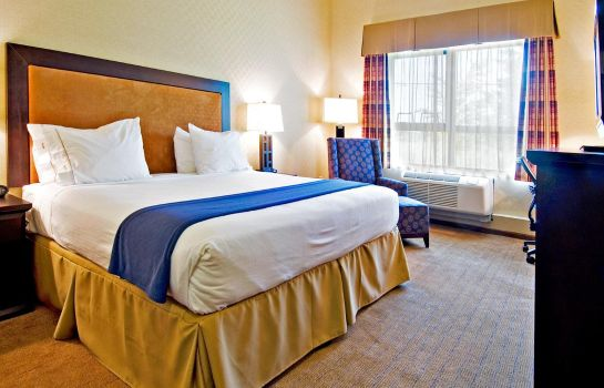 Room Holiday Inn Express & Suites RIVERPORT RICHMOND