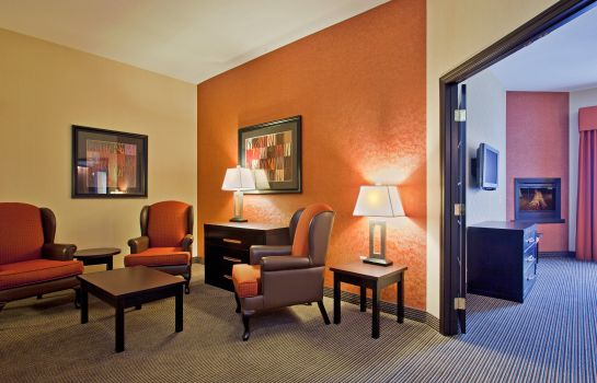 Chambre Holiday Inn Express & Suites AIRPORT-CALGARY