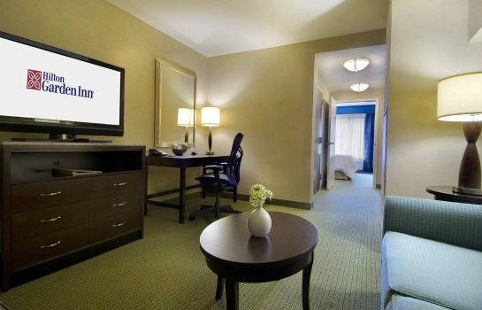 Suite Hilton Garden Inn Atlanta Downtown
