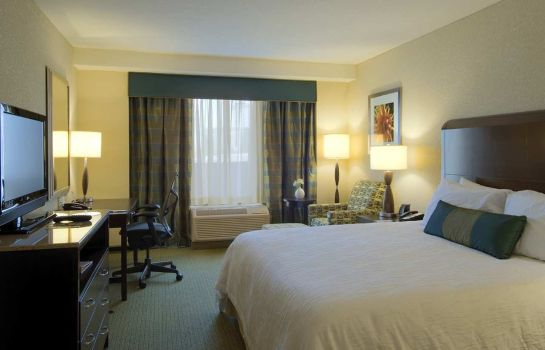 Zimmer Hilton Garden Inn Atlanta Downtown