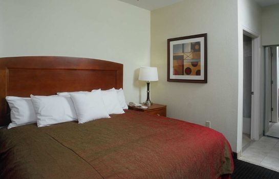 Suite Homewood Suites by Hilton Houston West-Energy Corridor
