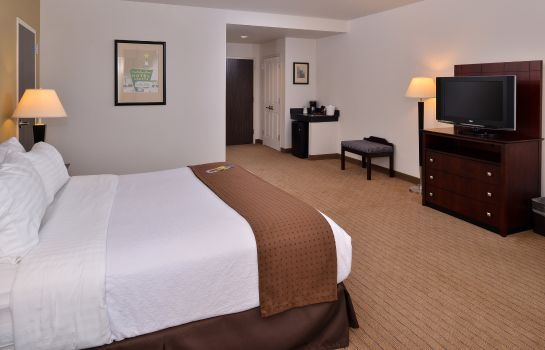 Chambre Holiday Inn MADISON AT THE AMERICAN CENTER