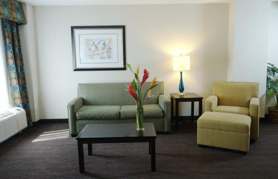 Suite Hampton Inn - Suites Nashville-Downtown